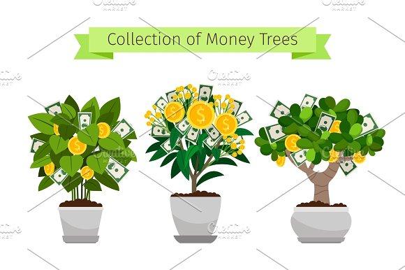 Money Tree In Flower Pot Set