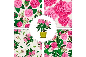 Pink flower icon and patterns set