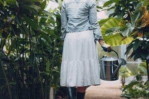 Female gardener watering plants