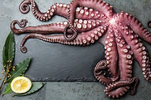 Octopus. Food background with seafood raw fresh octopus, laurel and lemon. copy space, gray slate background. Octopus, laurel and lemon around black slate board. Top view