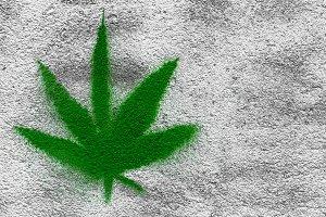 Marijuana on wall