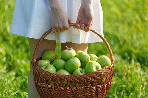 apples from your garden