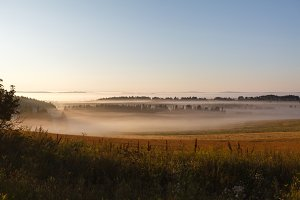 field in the sun and the fog