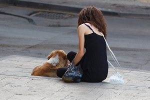 girl sits near to a homeless dog