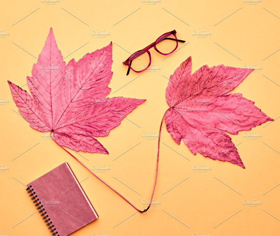 Pink Fall Leaves Background Minimal