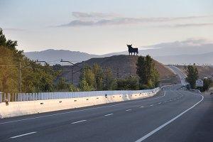 Traditional bull on Spanish roads