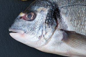 Dorado fish.