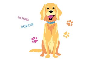 Vector sketch funny Golden Retriever dog sitting