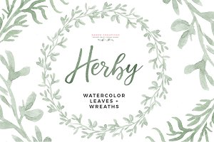 Watercolor Herbs Graphics Clipart