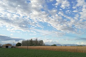 Fields, electric wires and clouds