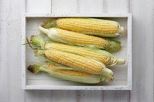 Sweet corns in wooden tray