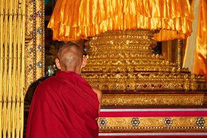 Praying buddhist monk