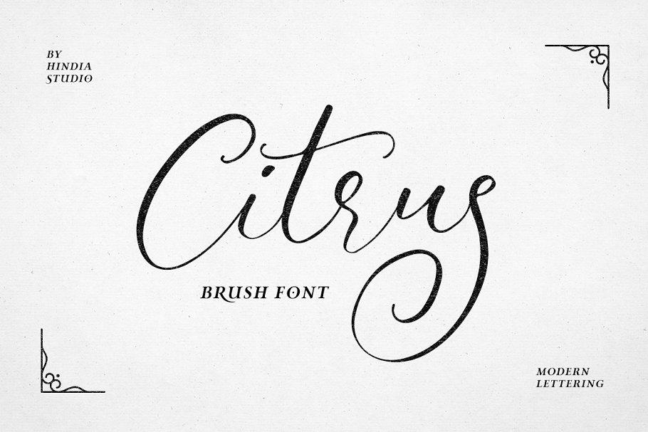 Citrus Script ~ Script Fonts ~ Creative Market