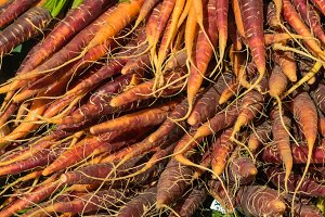 Fresh carrots at the market