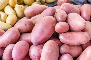 New crop red potatoes