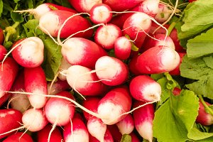 Red and white radishes