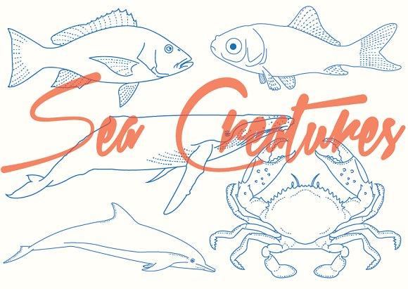 Sea Creatures Vectors