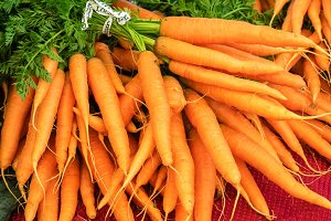 Orange carrots at the market