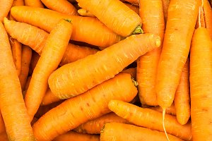 Orange fresh carrots