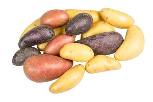 Red white and blue fingerling potato