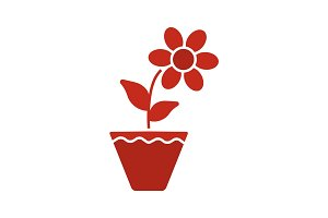 Crocus in flowerpot glyph color icon