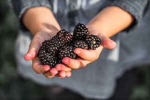 girl holding in hand fresh blackberries