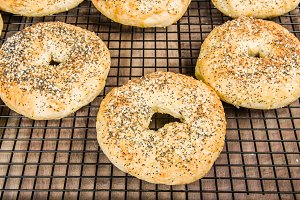 Fresh baked bagels on cooling rack