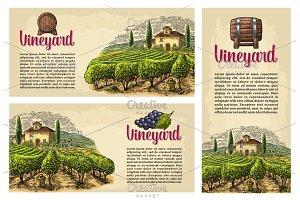 Vineyard, villa, landscape banner
