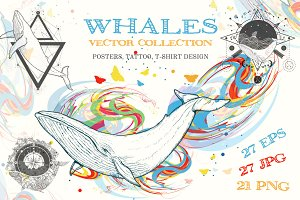 Whale collection