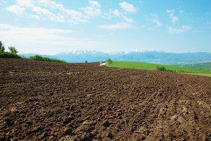 Plowed mountain field