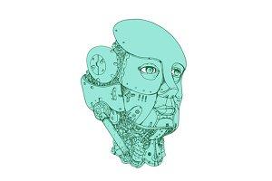 Humanoid Robot Head Female Monoline