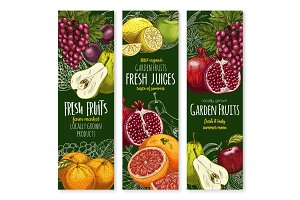 Vector sketch banners of tropical exotic fruits