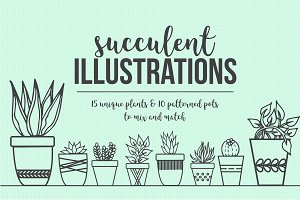 Hand Drawn Succulent Illustrations