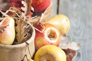 Pears and apples with fall leaves