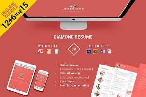 CV/Resume Bundle Website & Print