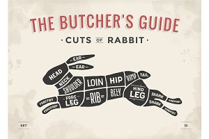 Cut of meat set. Poster Butcher diagram, scheme - Rabbit
