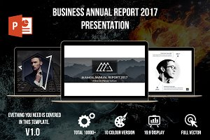 Business Annual Report 2017
