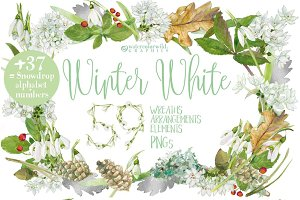 0101 Winter White