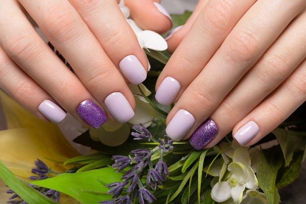 Purple neat manicure on female hand…