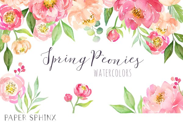 Watercolor Flower Peonies Clipart