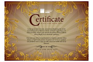 Certificate169
