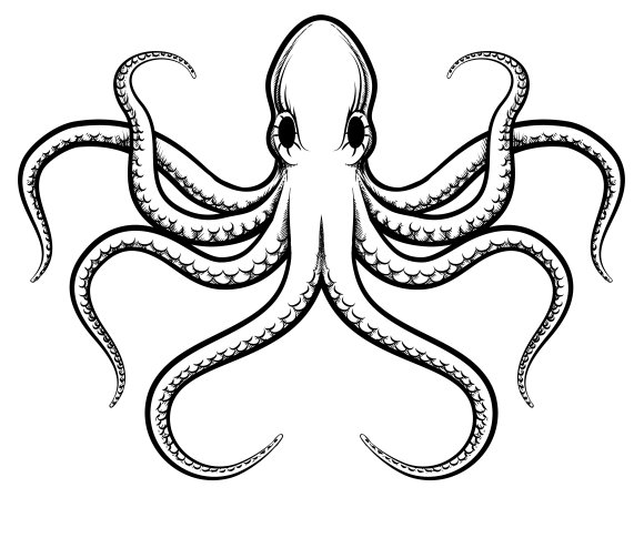 164003 Vector Octopus Illustration as well Selfie Cliparts Icons 22299047 as well Circle Dragon Tattoo further Family Fun Day At Auditorium Theatre as well 1051116 Eiffel Tower Vector. on now open vector graphics