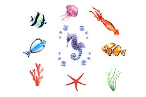 Watercolor marine inhabitants set