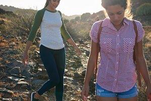Exploring the Desert Together