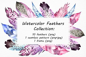 Watercolor Feathers clip art