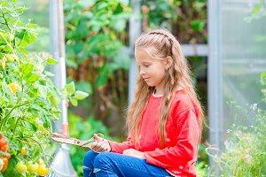 Cute litttle girl with big busket full of vegetables. Harvesting time