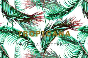 Tropical botanical jungle patterns