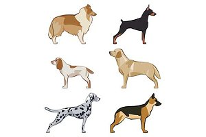 Set of colored vector dogs.
