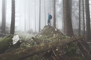 Hiker in misty forest