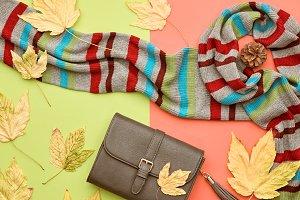 Autumn Fashion Lady. Minimal